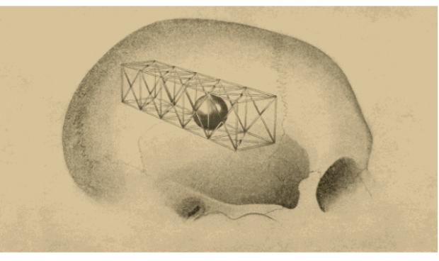 大脑如何在临界点附近玩跷跷板?