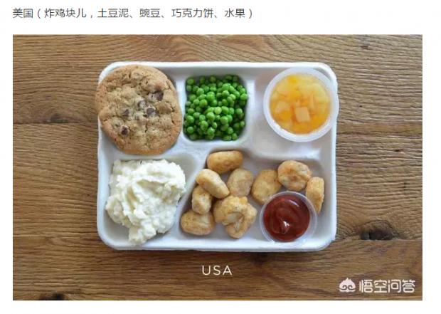 其他国家小学生中午吃的东西啥样?收钱吗?(图文)
