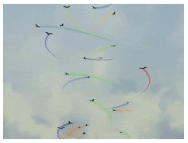 Science:白鹳的集体行为与全局迁徙模式