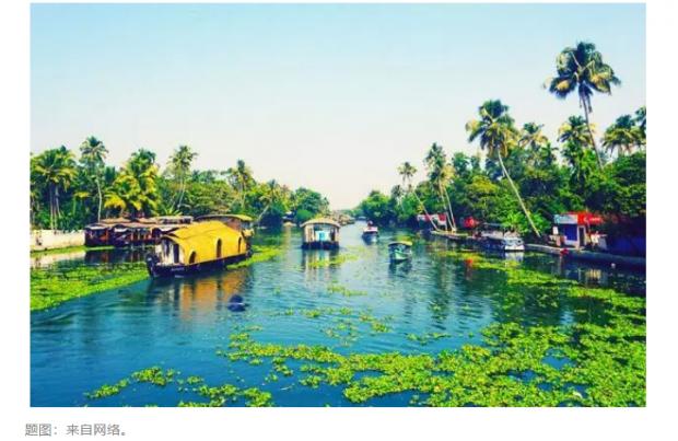暗涌|第七章 湄公河的水椰林