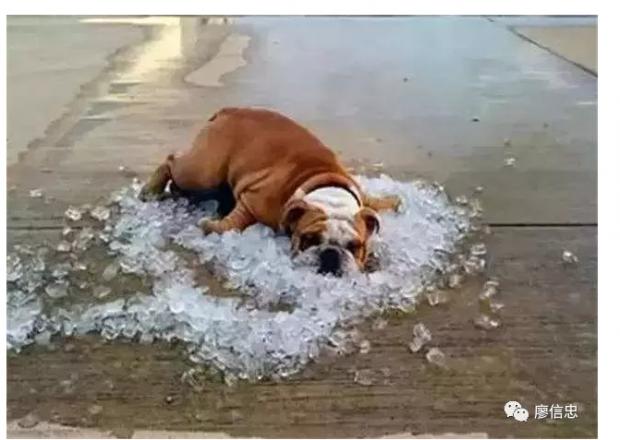 我有对再热都不开空调的父母