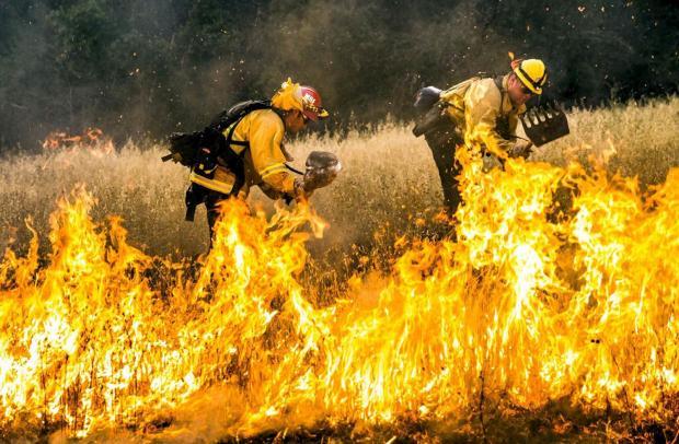 在野火肆虐的加州,水管理机制成为焦点