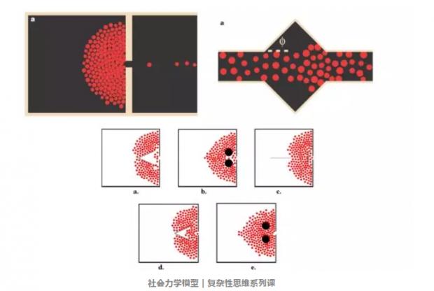 Science重磅: 蚂蚁的智慧——懒惰竟能让交通流输运效率最高