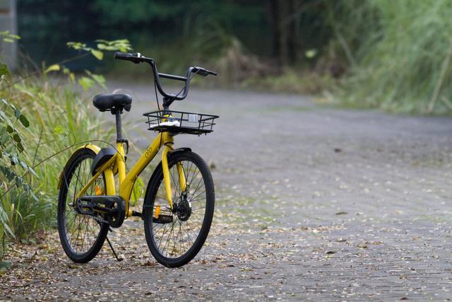 共享单车似乎已经成为死局了?那些抢着买的人是真傻吗?
