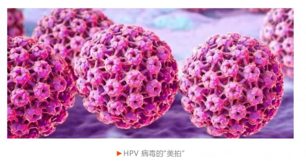 HPV疫苗:青少年最需要打的疫苗