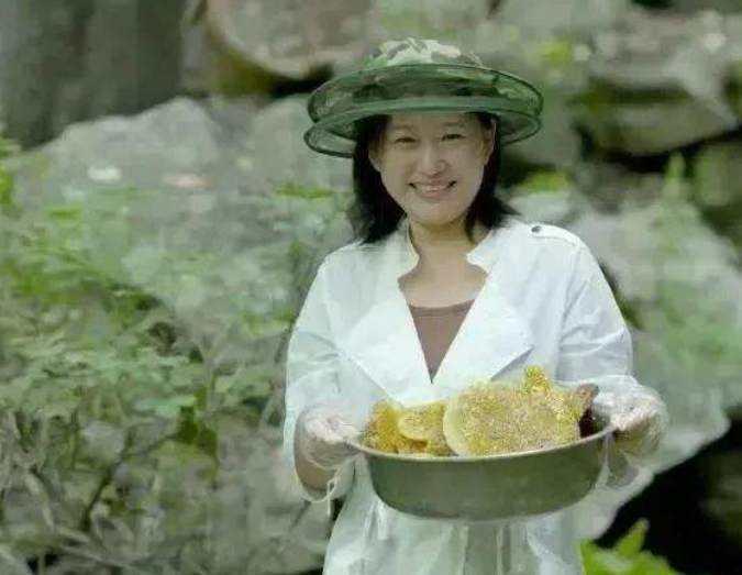 杨霞的三无蜂蜜被微信封了:别忘了还有辽参、纯粮食酒、冬虫夏草