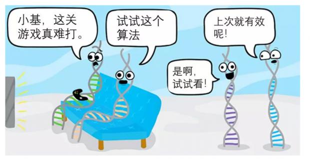 进化新视角:基因之间的重复博弈如何影响生物进化?