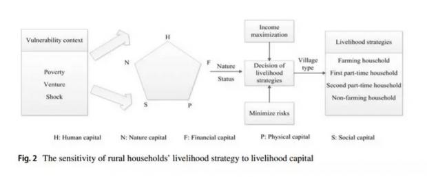 生计策略对生计资本的敏感性分析:基于中国农村的实证研究