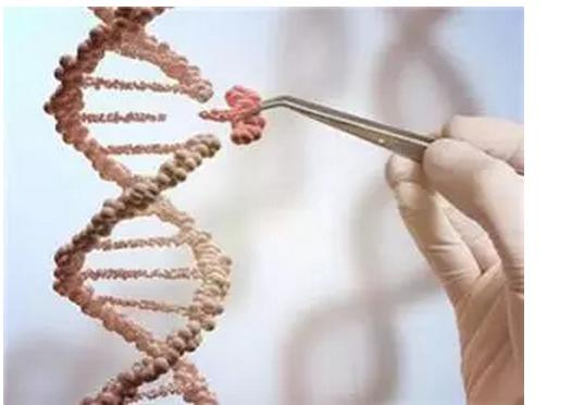 当编辑基因人出现,你该思考什么