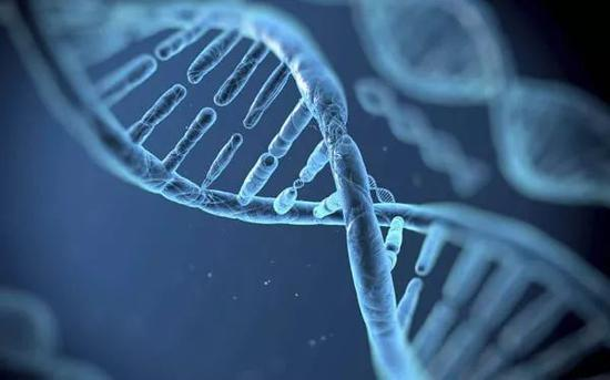 首例基因编辑婴儿诞生,谁能阻止不计后果的疯狂?
