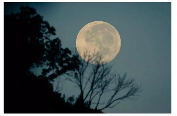 月球背面首个地球访客,它将来自中国!