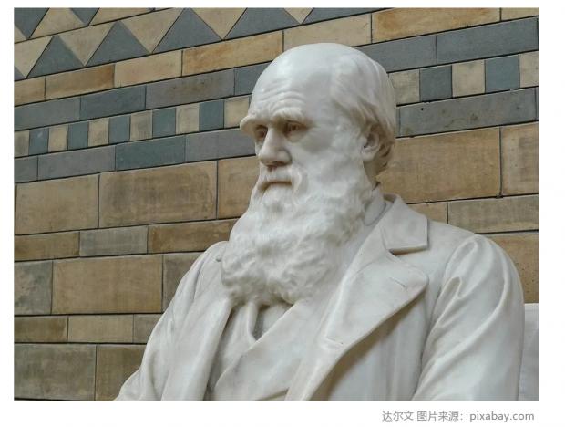 """达尔文""""晚年错误""""的遗传学理论有可能复活吗?"""