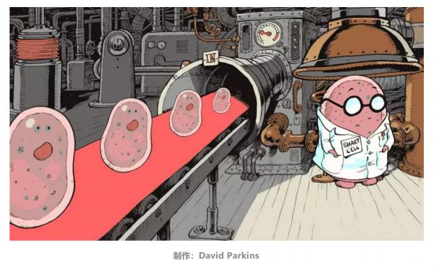 Nature重磅:用活细胞搭建逻辑电路——调控细胞功能的跨学科之旅