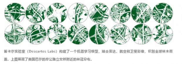 绿色城市核心技术揭秘:机器视觉+高清遥感准确估算城市树木