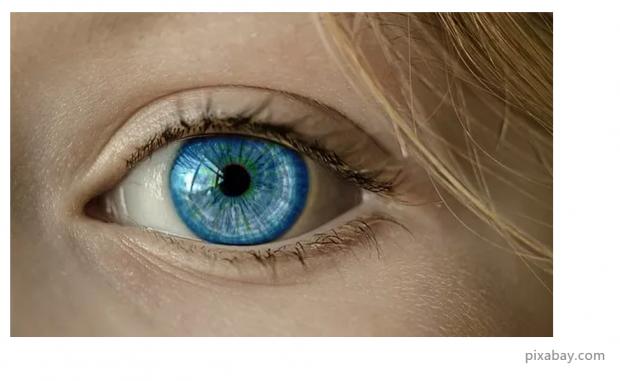 一只残疾的眼睛