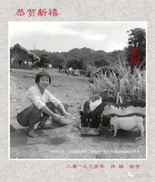 海南1973年:穿越时空的质朴微笑