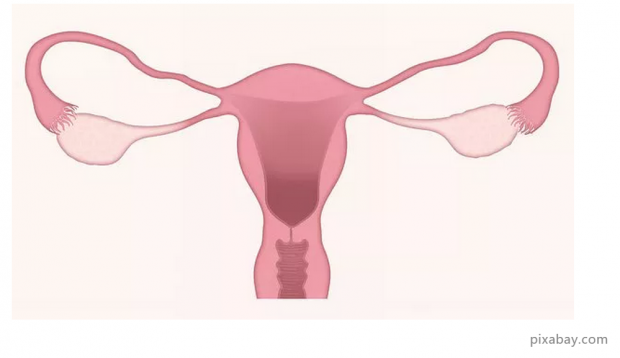 患宫颈癌是因为性生活不检点吗?