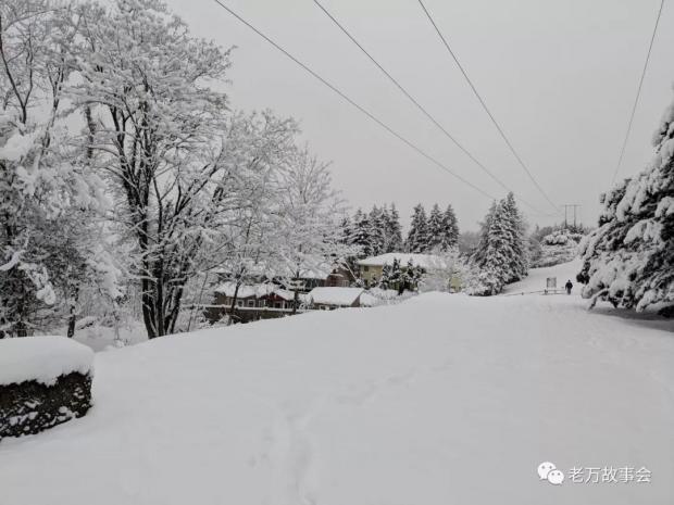 【老万】今夜有暴风雪