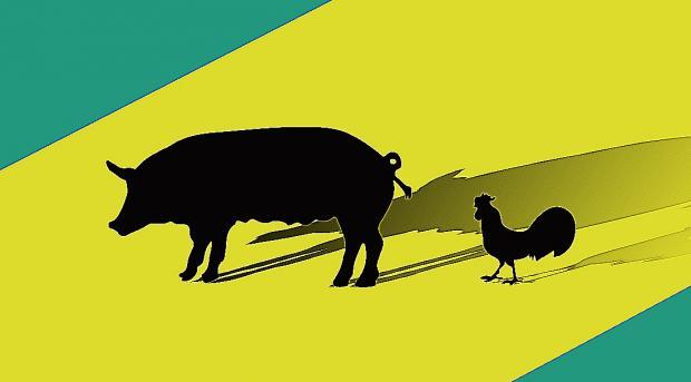 边涨边撤:畜禽养殖股飙涨,上市公司董监高逢高出货