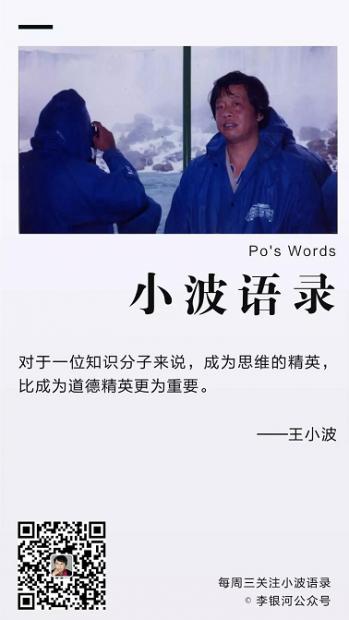 【小波语录】思维精英vs.道德精英