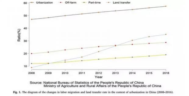 中国农村劳动力回流会遏制耕地抛荒吗?
