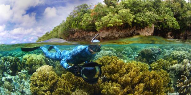 """""""保护海洋,我们不能只写讣告"""""""