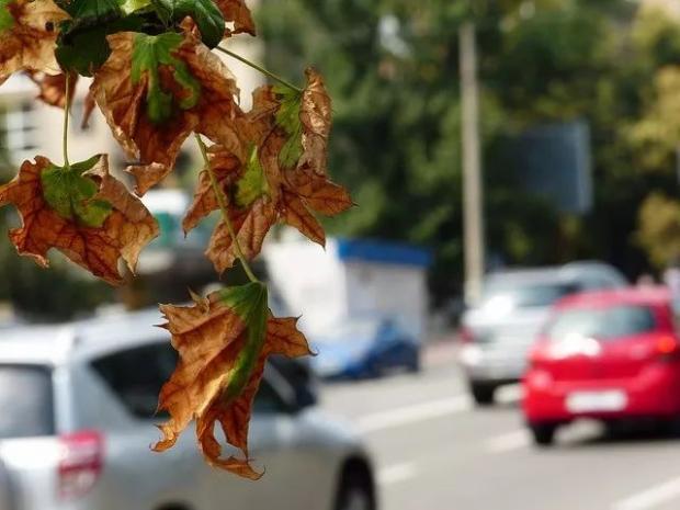 微博数据表明:空气污染严重降低国人幸福感