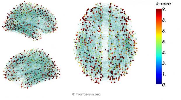 大脑网络如何实现从意识到潜意识的状态转变?k核分解给你答案