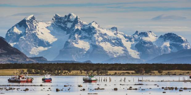 """拉丁美洲""""南锥体""""国家如何引领海洋保护"""