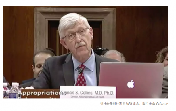 """美国NIH""""排华""""行动继续发酵,称要解雇部分涉事科学家"""