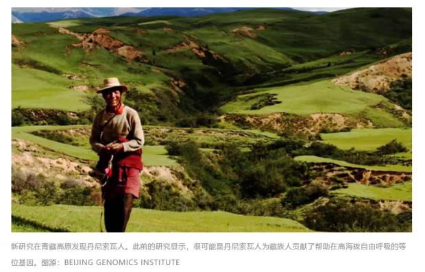 丹尼索瓦洞之外的丹尼索瓦人,在中国的青藏高原现身了