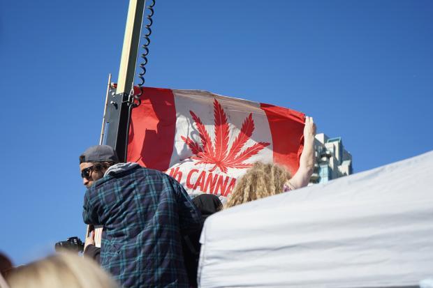 合法后,加拿大吸食大麻的中年男数量飙升