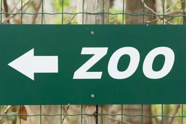 动物园里发生的那些奇葩事儿