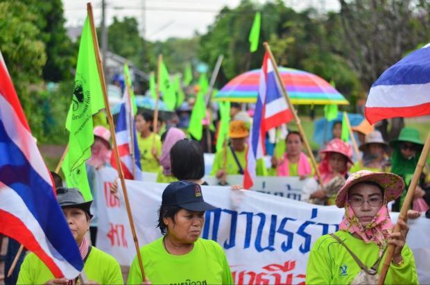 泰国农民抗议大宗甲碱出口