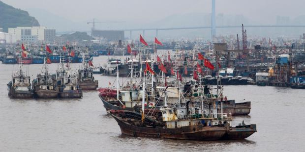 世贸组织取消渔业补贴对中国意味着什么