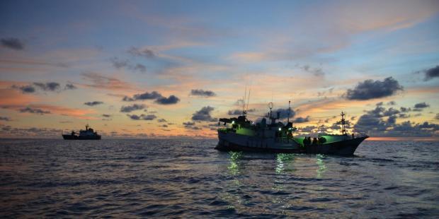 各国合力打击非法捕捞取得成果
