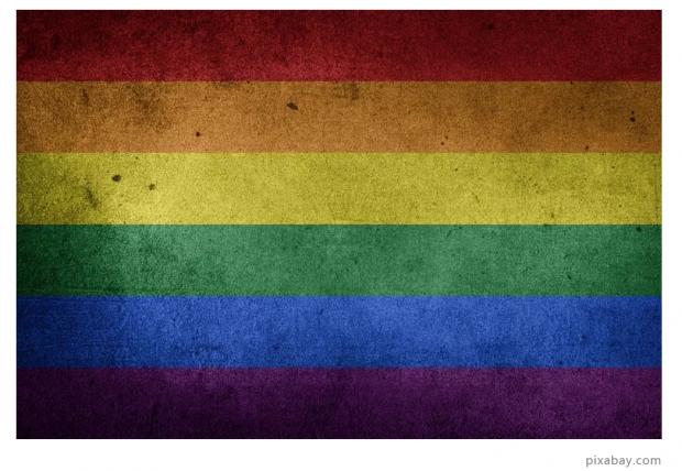 病态,次等,正常:一位精神病学家与同性恋的30年