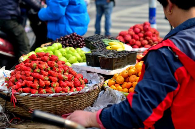 从产量到质量:中国农业的生态转型之路