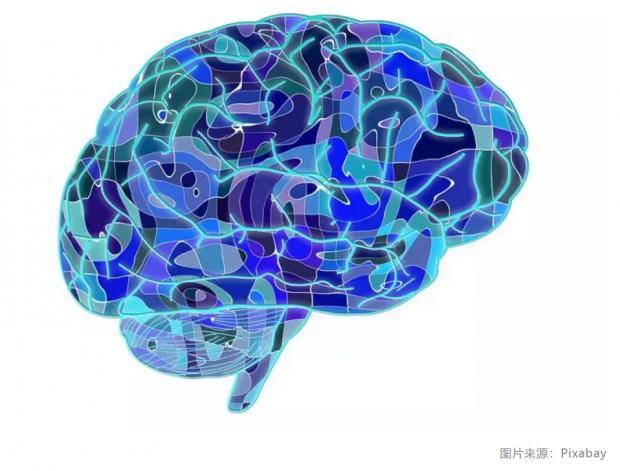 你没听错,科学家已经能用手机遥控大脑了   一周科技