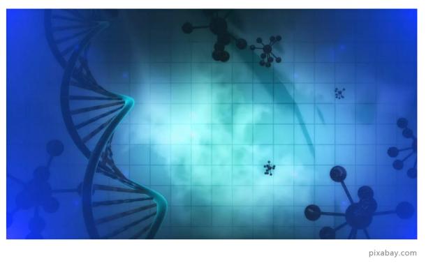 专访王皓毅:Ago蛋白,基因编辑的新工具?