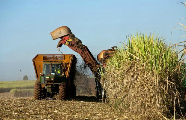 中国需求推动巴西乙醇产业升温