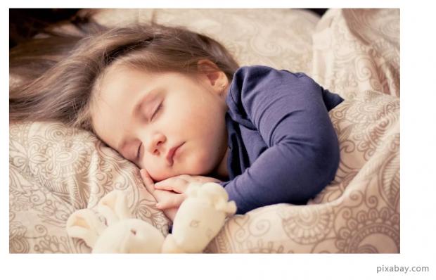 最新研究揭示:睡眠时遗忘细胞会清理记忆