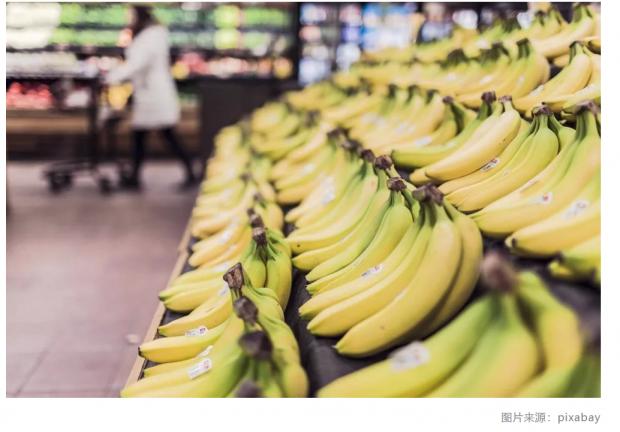 打麻将或降低抑郁症风险;香蕉真的要灭绝了?!