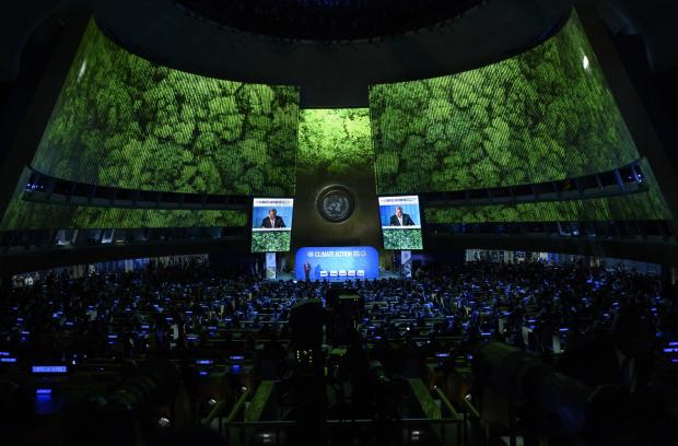 """中国在气候行动峰会上引领""""基于自然的解决方案"""""""