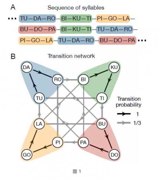 图学习:探索网络结构如何影响人类认知的新兴领域