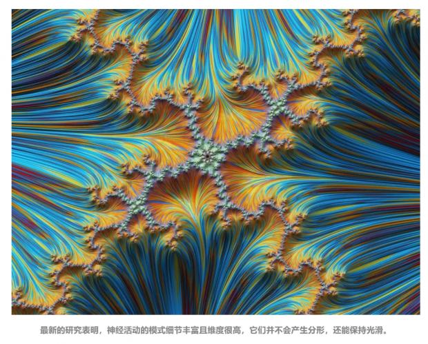 """""""幂律与临界""""支配神经网络 深度学习技术要向大脑学习"""