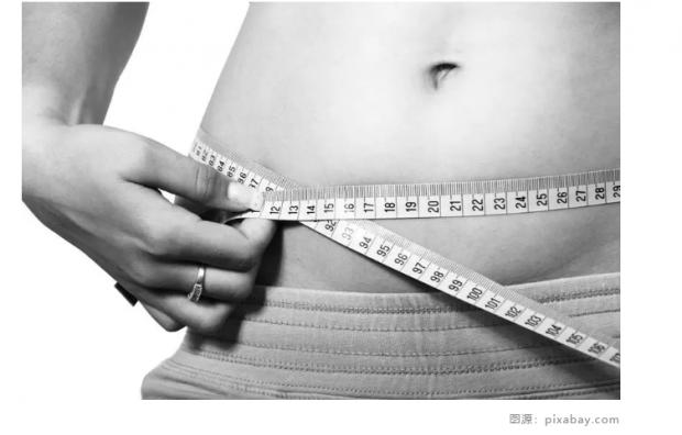 中国肥胖地图出炉 哪个省的胖子多?