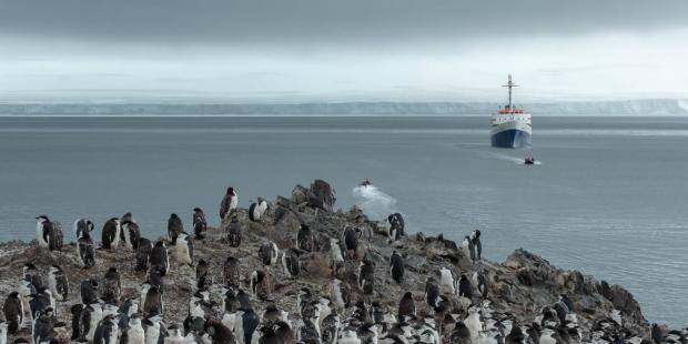 《中国的极地前沿》播客:中国对南极的兴趣