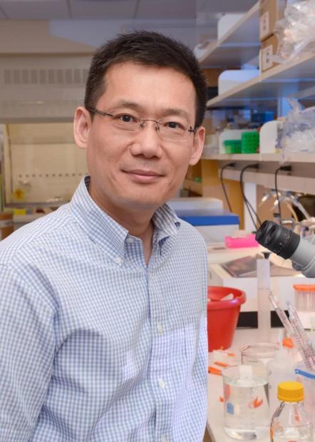 西湖大学生命科学院新任院长于洪涛:我相信年轻人的看法