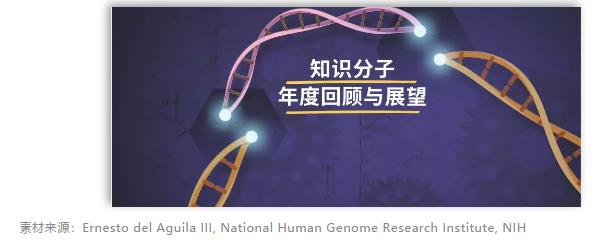 新年愿望:听谢晓亮等14位科学家怎么说